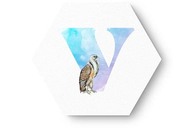 Buchstabe V