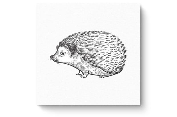Tierzeichnung2